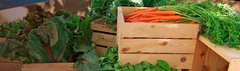 fruta y verdura supermercados y grandes superficies