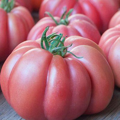 tomate rosado